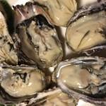【応援】石巻復興に貢献する海産物卸会社「魚壱」
